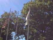 More flags at the library...